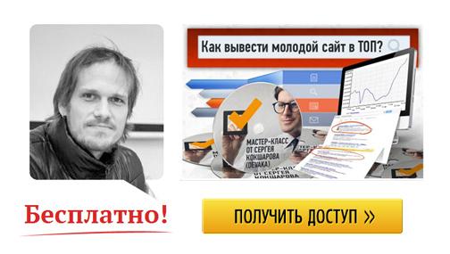 Скачать бесплатно мастер-класс Сергея Кокшарова - Девака - Как вывести молодой сайт в ТОП
